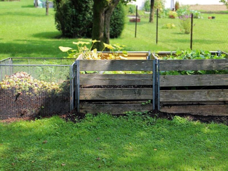 Kompostowanie bez tajemnic – jak zacząć?